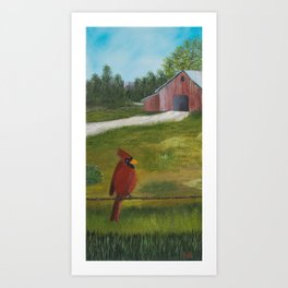 Kevin the cardinal loves to sing his heart out on the farm Art Print