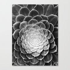 fibonacci Canvas Print