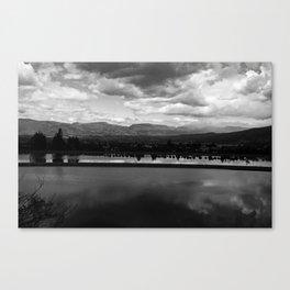 # 340 Canvas Print