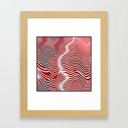 A Zebra of a Different Color Framed Art Print