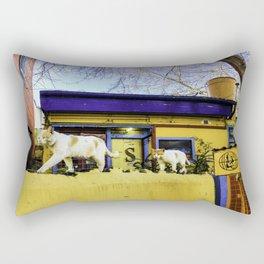 Cats in Buenos Aires #2 Rectangular Pillow