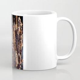 grass in golden light Coffee Mug