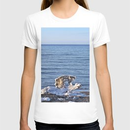 Nature's Ice Sculpture on the Beach T-shirt