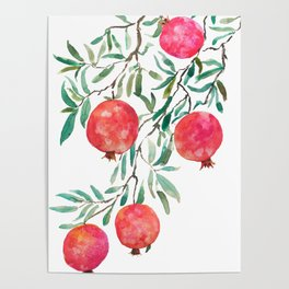 red pomegranate watercolor Poster