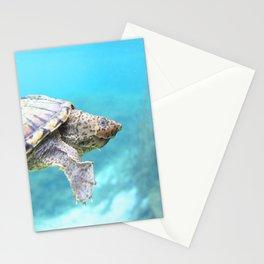 Watercolor Turtle, Loggerhead Musk Turtle 01, Rainbow Springs, Florida Stationery Cards
