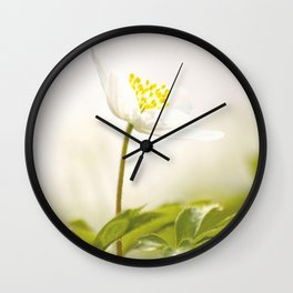 Wood Anemone Blooming in Forest #decor #society6 #buyart Wall Clock
