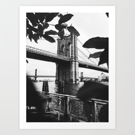 Brooklyn Bridge Cameo Art Print