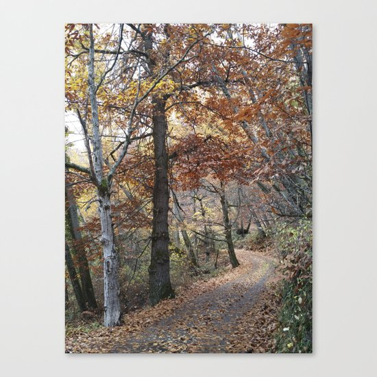 Into the fall woods. Yesterday Canvas Print