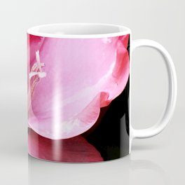 The Gladiola In Pink  Coffee Mug
