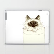 Puss in Pocket (B) Laptop & iPad Skin