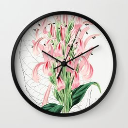 Flesh-colored justicia from Edwardss Botanical Register (1829-1847) by Sydenham Edwards John Lindley Wall Clock