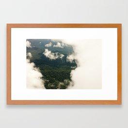 the rainforest  Framed Art Print