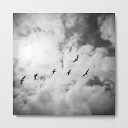 """Bird Silhouettes"" Holga double exposure Metal Print"