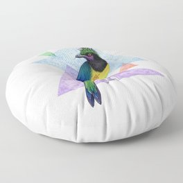 Alternative Jay Floor Pillow