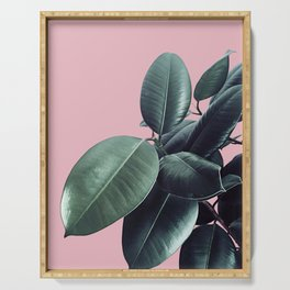 Ficus Elastica #14 #CoralBlush #decor #art #society6 Serving Tray