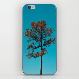 Single Tree  iPhone Skin