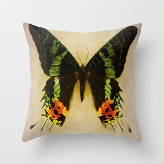 Sunset Moth Wing Throw Pillow