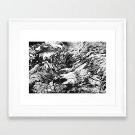 Tree Bark Detail I Framed Art Print