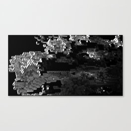 Cellular Automata 01 Canvas Print