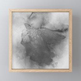 Trampled Rose Black and White Framed Mini Art Print