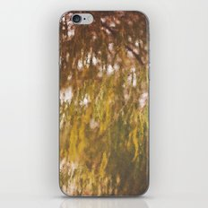 Willow iPhone & iPod Skin