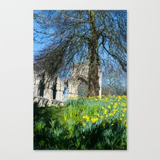 Spring in Museum Gardens Canvas Print