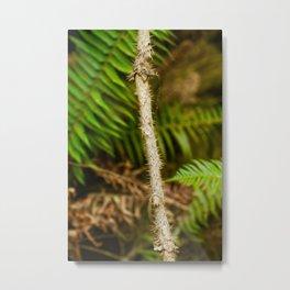 IMG_0030 Metal Print