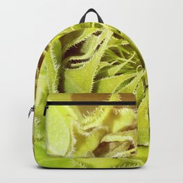 Unfurl Backpack