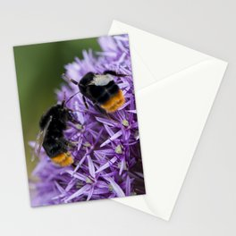 Fighting Bumble Bees Stationery Cards
