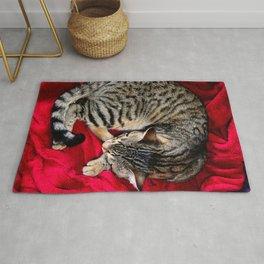 Cute Tabby Cat napping Rug