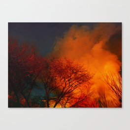 Violent Autumn #2 Canvas Print
