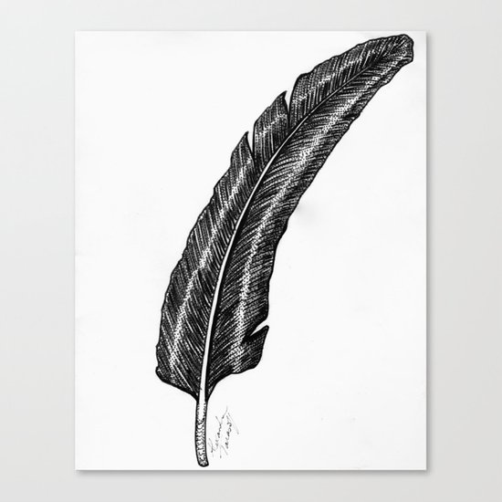 Raven Feather Canvas Print