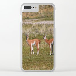 Guanaco family Clear iPhone Case