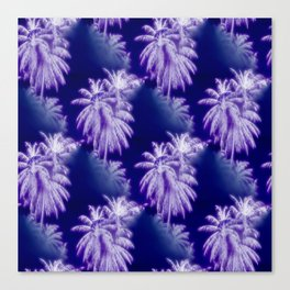 Palm Trees Coastal Evening Canvas Print
