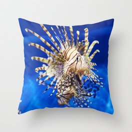 Poisonous lionfish in blue water sea Throw Pillow