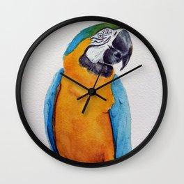 Macaw II Wall Clock
