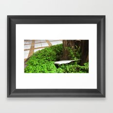 Feather In Green Framed Art Print