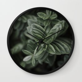 Stripes are nice - The Netherlands photo | Nature Botanical Green Plants Leaf Leaves Outdoors photography art print Wall Clock