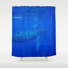 Underwater Humpbacks 8 Shower Curtain
