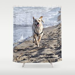 WHITE DOG in SICILY Shower Curtain