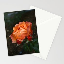 Bright Flame Stationery Cards