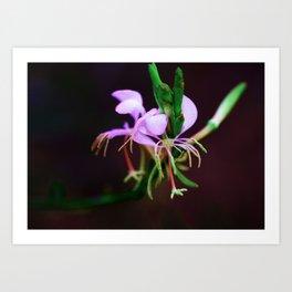 Southern Wildflowers Art Print