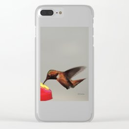 Rufous in for a Quick Lunch Clear iPhone Case