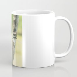 Green fence Coffee Mug