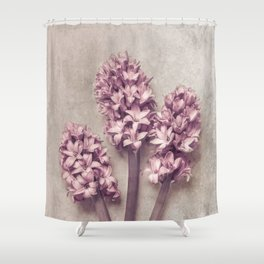 Lovely pink Hyacinths Shower Curtain