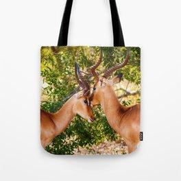 Gazelle (Color) Tote Bag