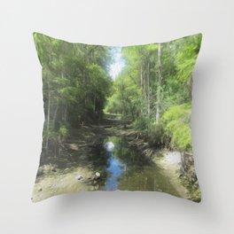 A Brand New Journey Throw Pillow