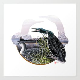 DW-019 Song Of The Loons Art Print
