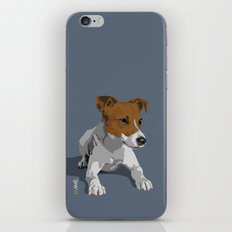 Jack Russell Terrier Dog iPhone & iPod Skin