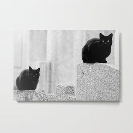 Black cats in a Cemetery Metal Print
